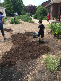 Mulching low spots to catch water!
